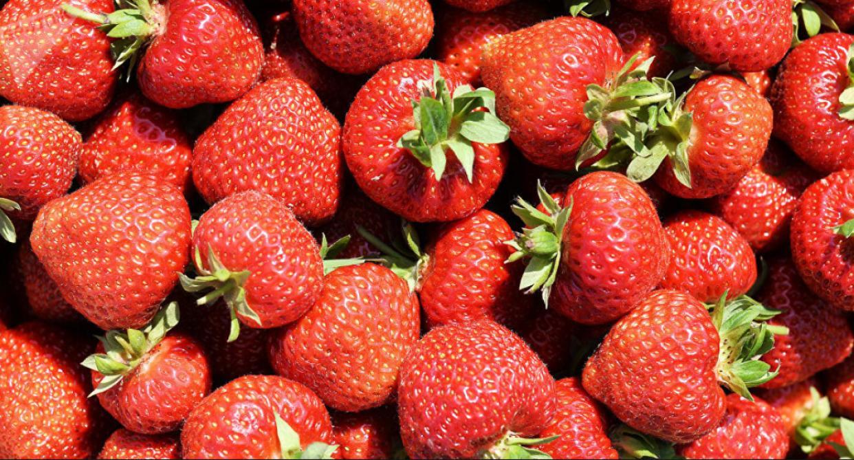 Des fraises ont été retrouvées avec des aiguilles à l'intérieur — Australie