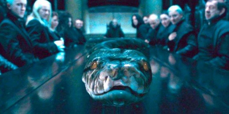 Les animaux fantastique 2 : le serpent de Voldemort était une femme