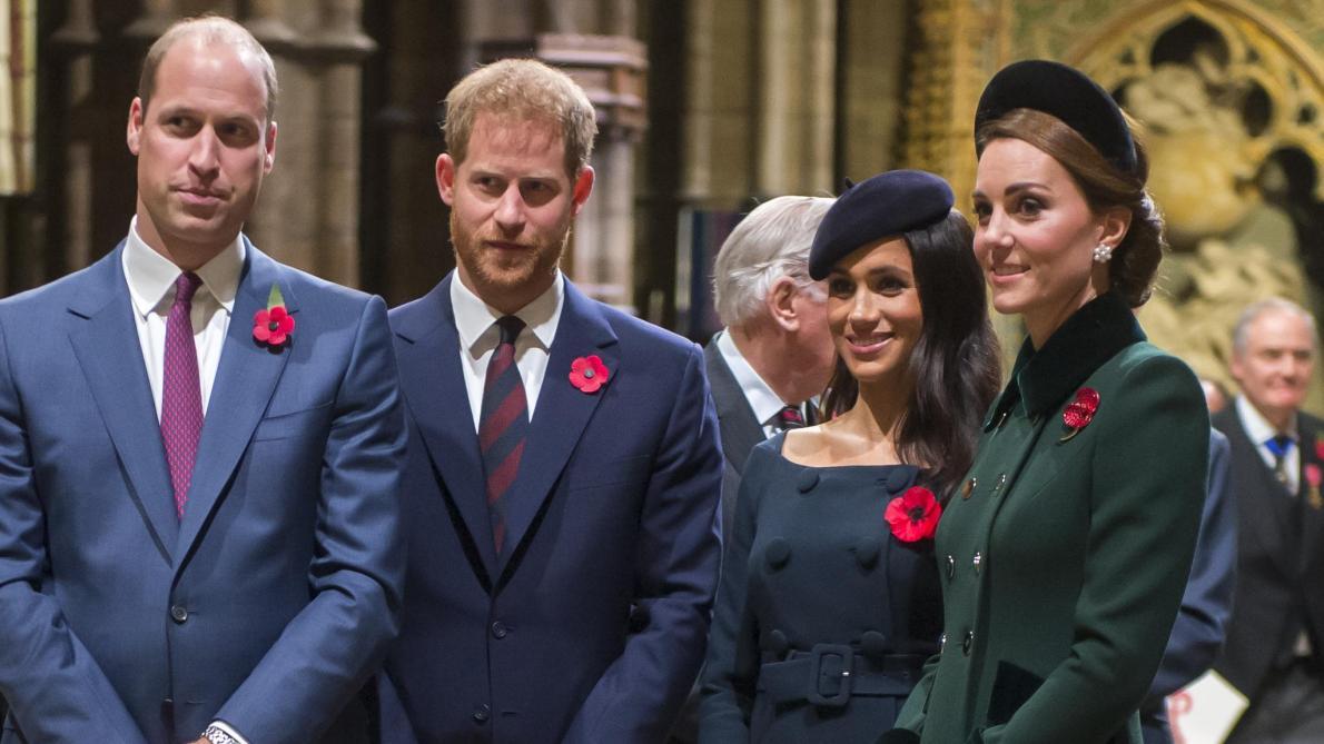 Le prince Harry très critiqué après un discours sur l'écologie —