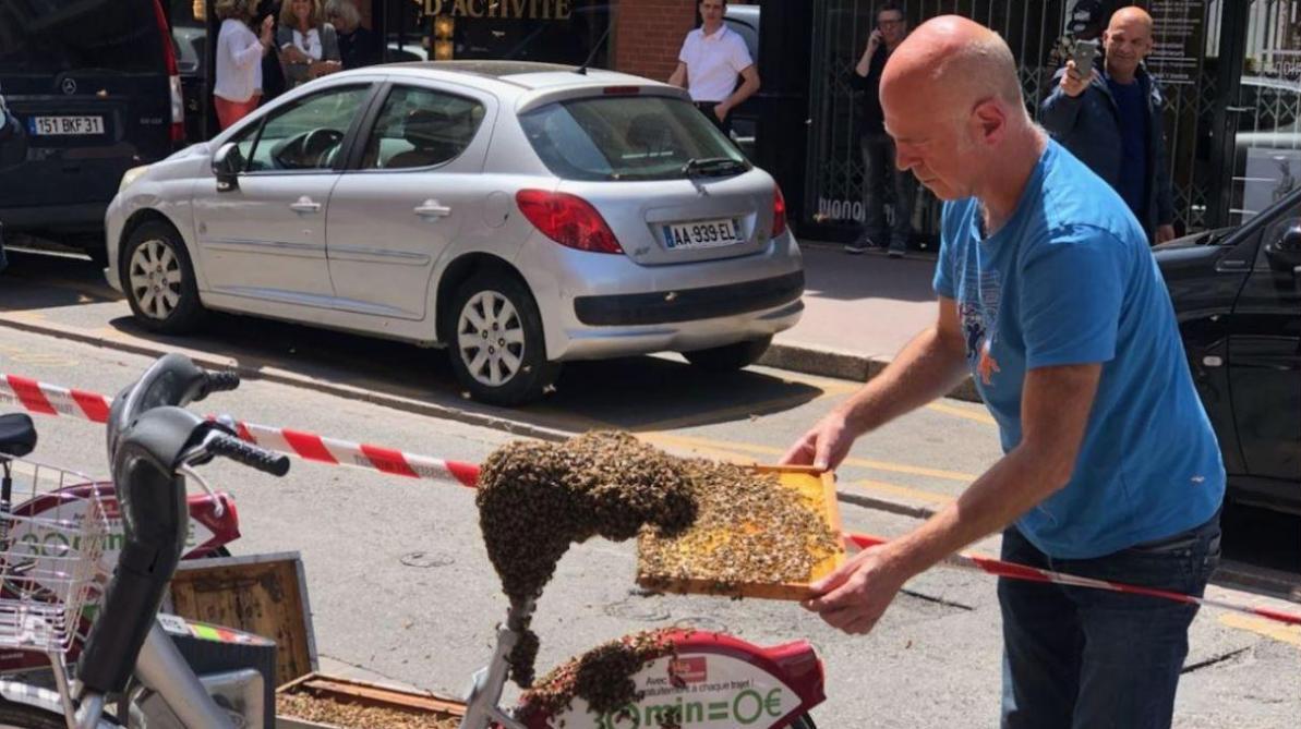 France: un essaim de plusieurs milliers d'abeilles recouvre un vélo dans le centre-ville de Toulouse