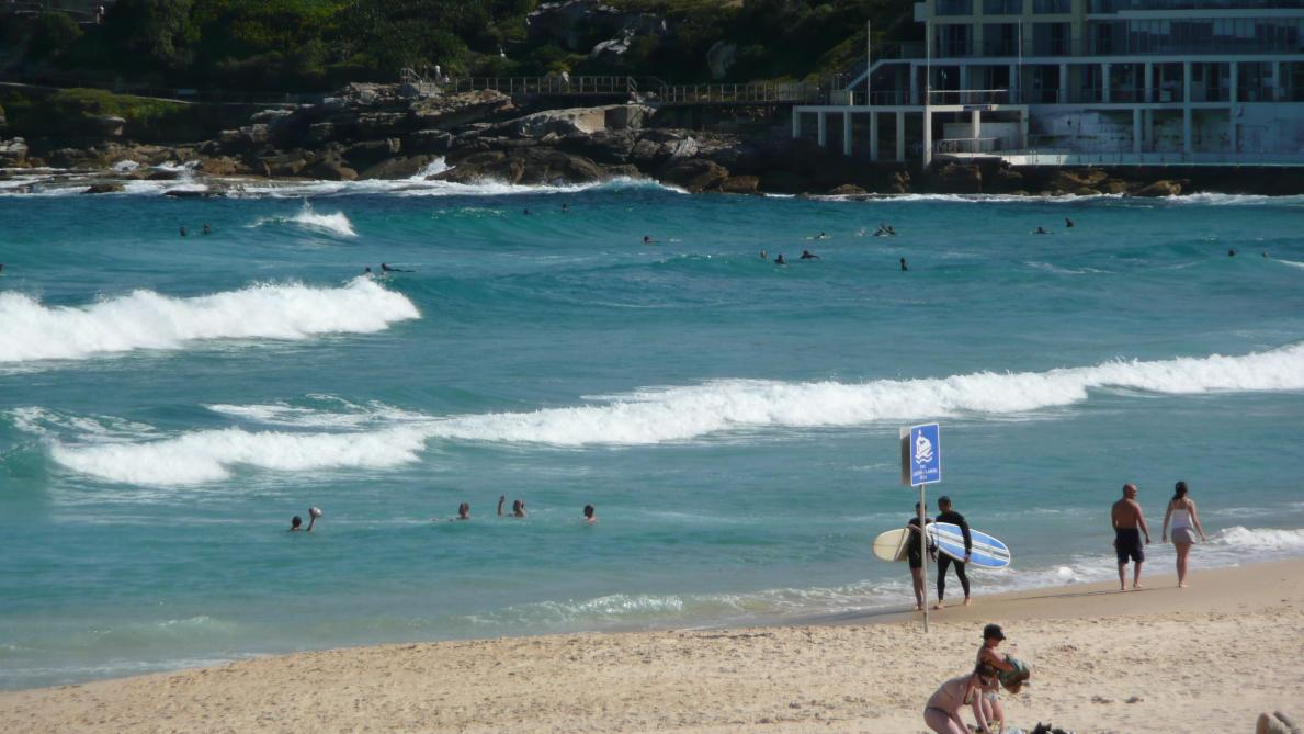 Un jeune surfeur de 17 ans tué par un requin — Australie