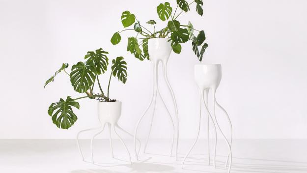 Tim van de Weerd, «Monstera objects».